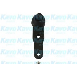 Ball Joint KAVO PARTS SBJ1005