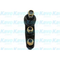 Ball Joint KAVO PARTS SBJ1001