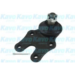 Ball Joint KAVO PARTS SBJ1503